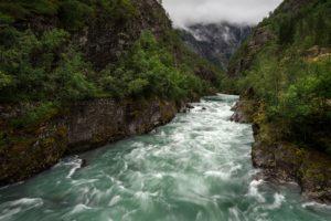 River salmon LTS